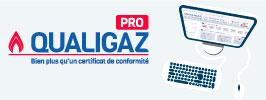 logo service qualigaz pro